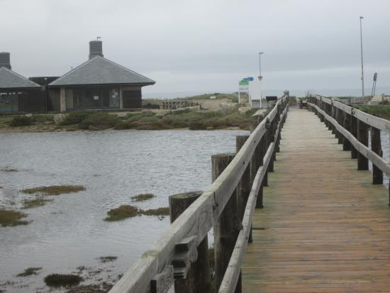 Taste Cafe at Chesil Beach: Bridge from the beach to the cafe