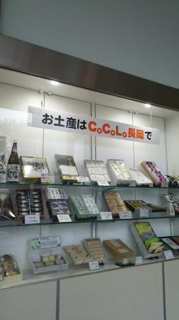 CoCoLo長岡