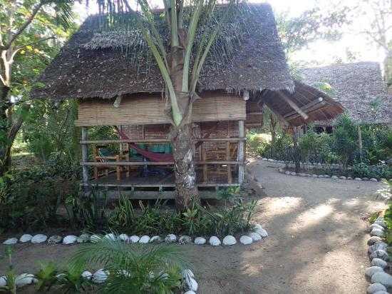 Artistic Diving Sipalay Room Rates