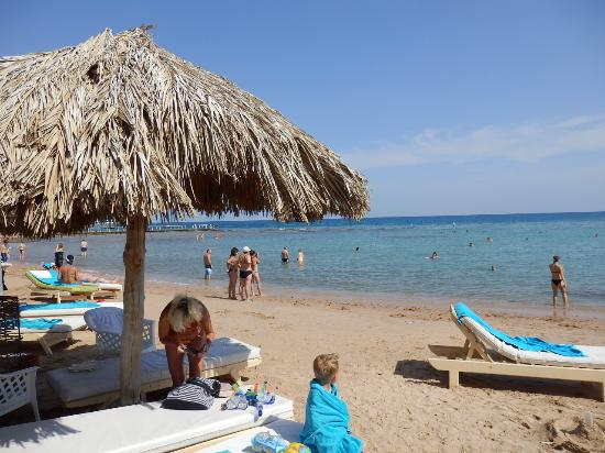 Beach Picture Of Ali Baba Palace Hurghada Tripadvisor