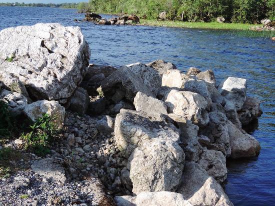 Killinure Chalets: River Shannon
