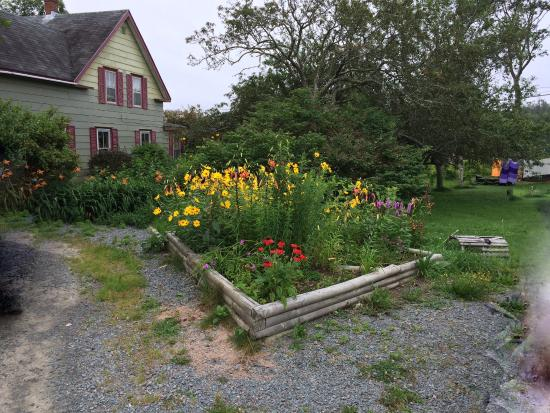 Sheet Harbour, Kanada: One of the flower beds.