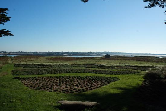 Jardin georges delaselle picture of ile de batz roscoff for Jardin georges delaselle
