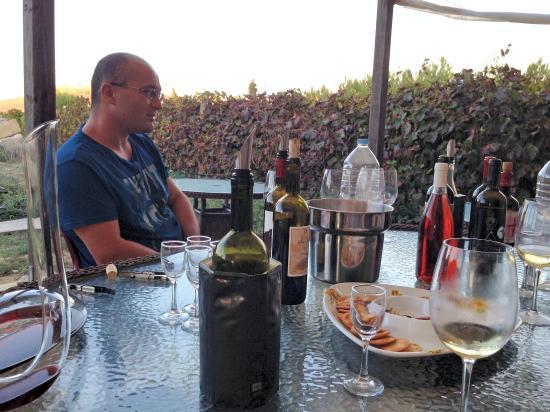 Tal-Massar Winery: Anthony steht uns Rede und Antwort