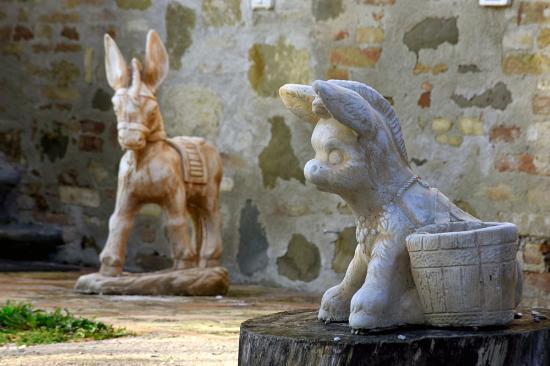 Collestrada, Italie : Donkeys everywhere