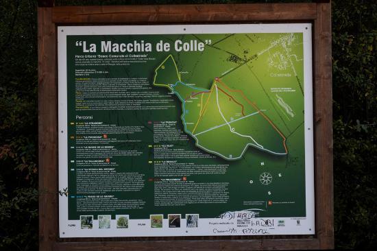 Collestrada, Italia: Trails nearby