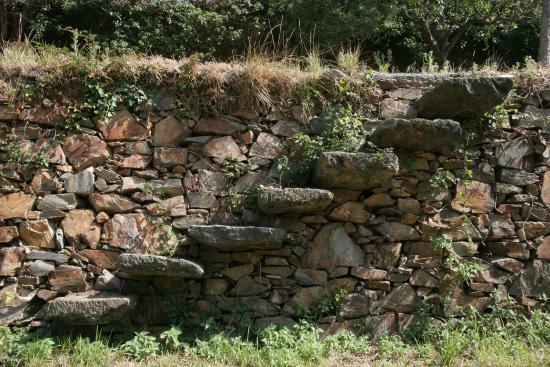 Escalera De Piedra Entre Terrazas Picture Of Finca