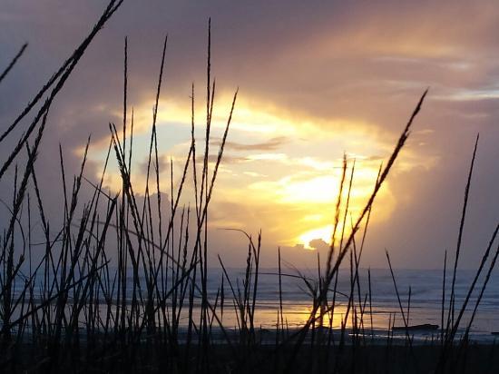 Ocean Shores, Вашингтон: 20151101_165406_large.jpg