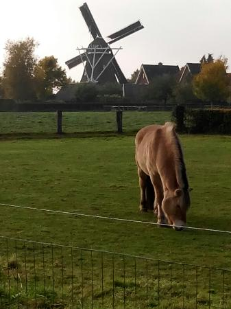 Dalen, The Netherlands: Molen de Bente