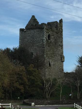 County Cork, Irlanda: Ballinacarriga Castle