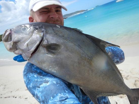 Spearfishing Puerto Rico: Uff!