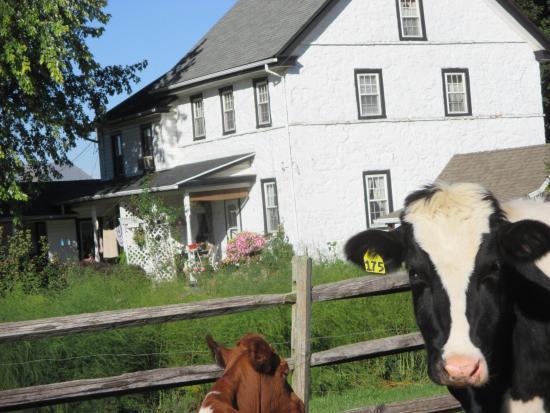 Narvon, PA: The 1791 House