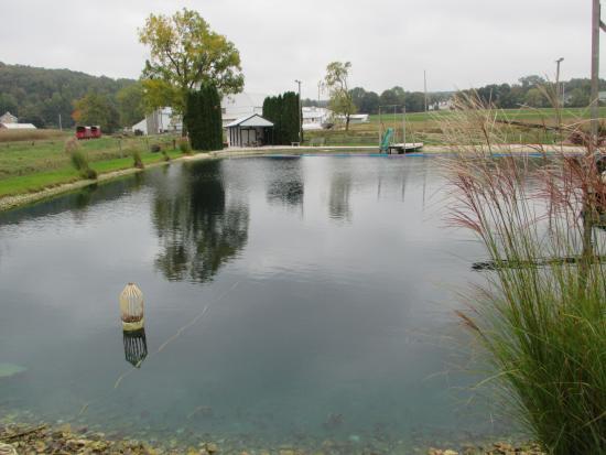 Narvon, Pensilvania: The Ol' Swimming Hole