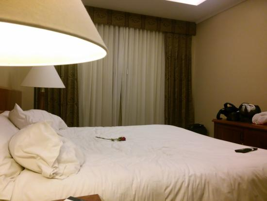 hotel palace guayaquil: