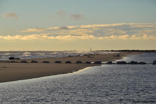 Plage de pi menson photo de plage de pi manson salin de - Office du tourisme salin de giraud ...