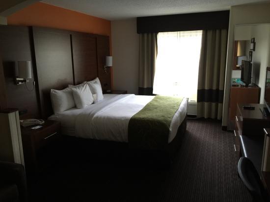 Comfort Suites St.Joseph / Stevensville: photo0.jpg