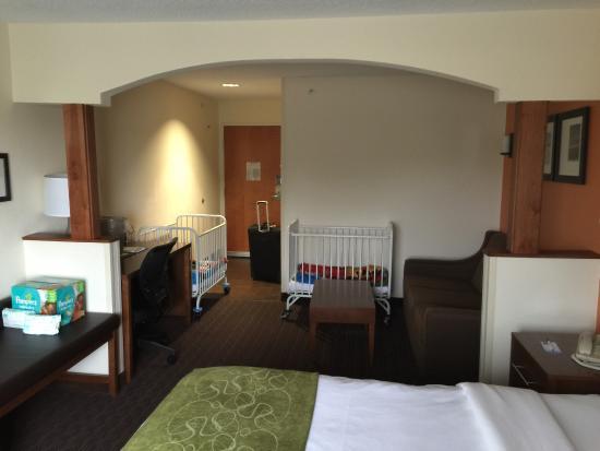 Comfort Suites St.Joseph / Stevensville: photo1.jpg
