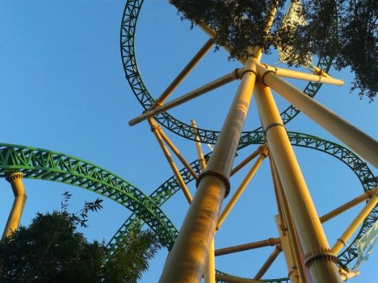 Falcon 39 S Fury Picture Of Busch Gardens Tampa Tampa