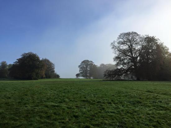 Earlham Park: Fields