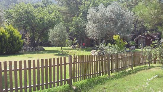 Sea Valley Bungalows: View from some of the bungalows in the valley