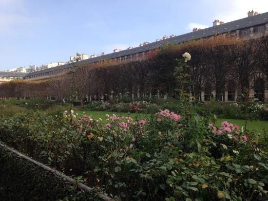 Une exposition temporaire au coeur des jardins picture for Au jardin du port le palais