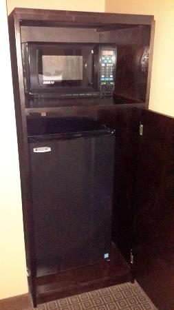 enVision Hotel Boston - Longwood: microwave and refrigerator