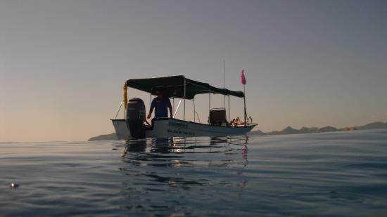 Cabo Pulmo Diving: Dive Pangas