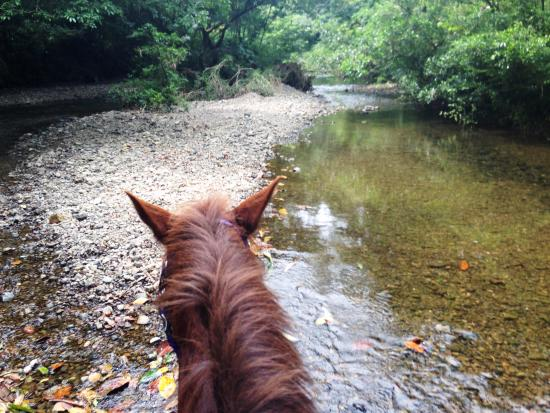 Casita Rio Indio : horseback riding outing