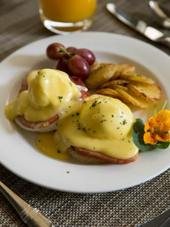 Wayne, Pensilvania: Terrace Room Breakfast Eggs Benedict
