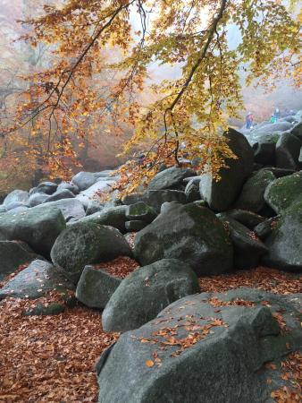 Lautertal, Deutschland: Felsenmeer