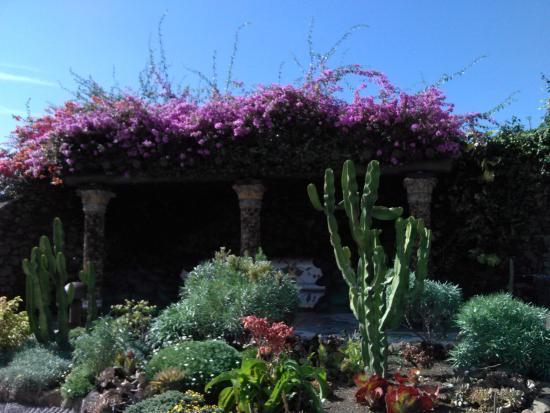 Las Manchas, Spania: jardines
