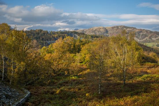 Little Langdale, UK: Hodge Close in Autumn