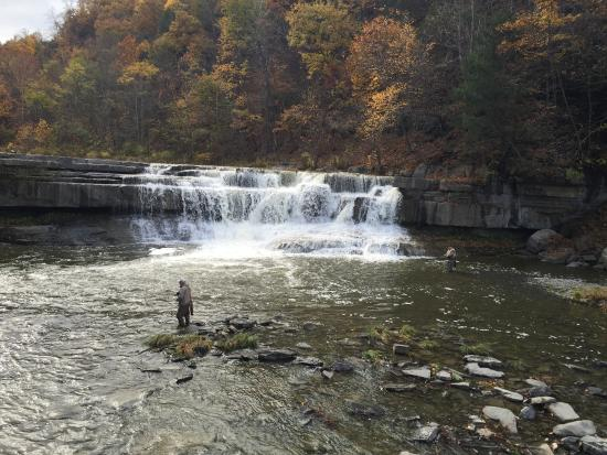 Trumansburg, estado de Nueva York: Fly fisherman