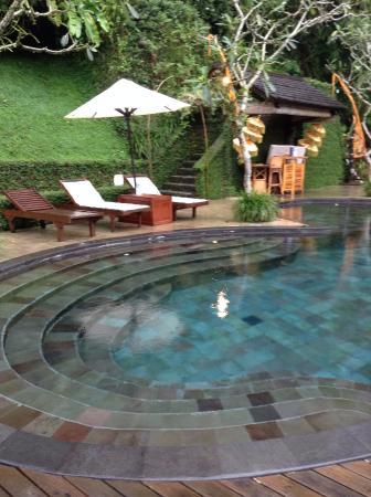 kolam renang yang indah picture of nandini bali jungle