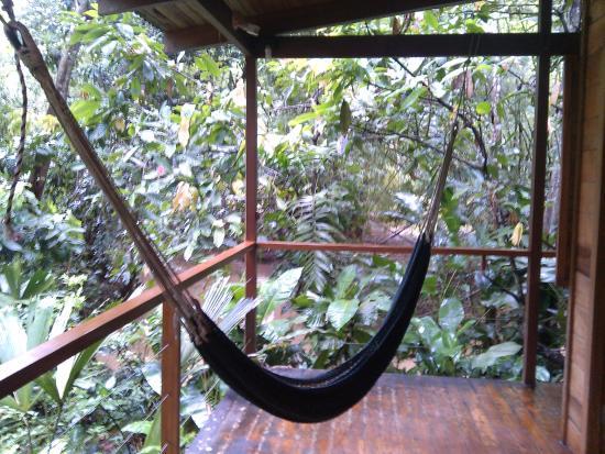El Tucan Jungle Lodge: 部屋の外のテラスにあるハンモック