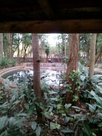 Zoologico de Catanduva