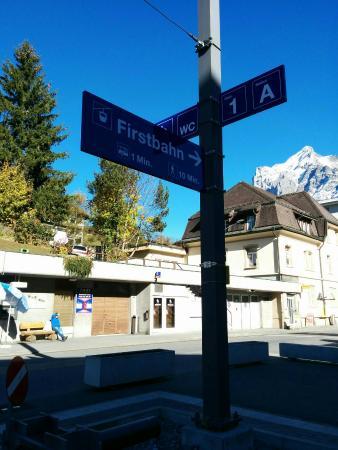 Grindelwald, Szwajcaria: IMG_20151023_144506_large.jpg