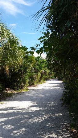 Брадентон, Флорида: Path to the beach