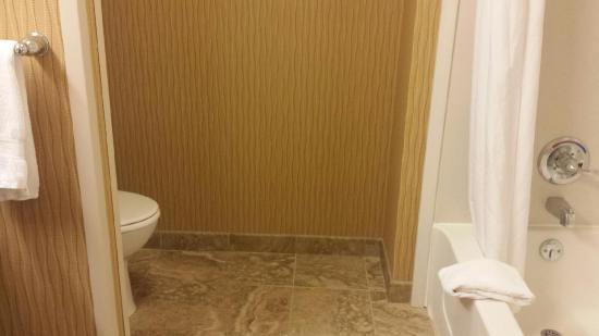 Hampton Inn & Suites Rochester / Henrietta: very modern bathroom