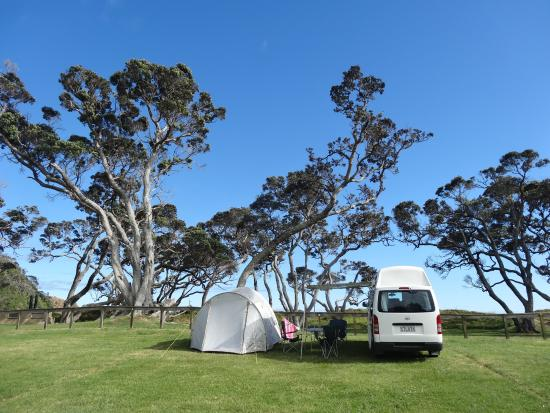 Otamure Bay (Whananaki) Campsite: Our place