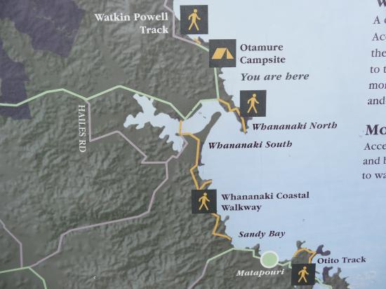 Otamure Bay (Whananaki) Campsite: Walks around
