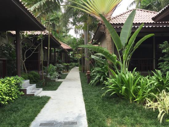 Evergreen Resort : photo1.jpg