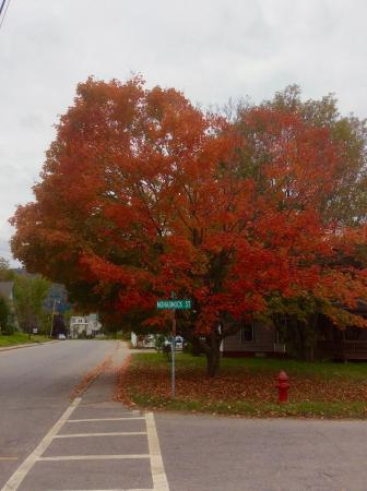 Notch View Inn: Fall in Colebrook