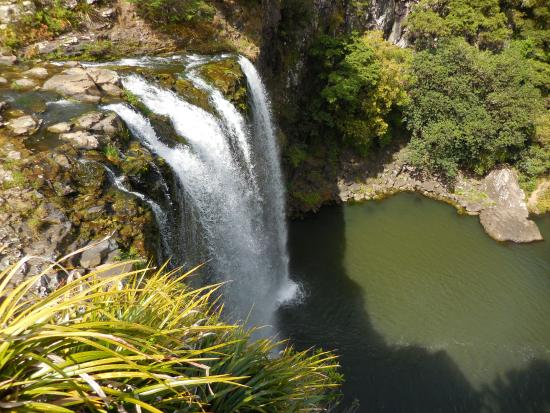 Whangarei, New Zealand: Top ofthe falls