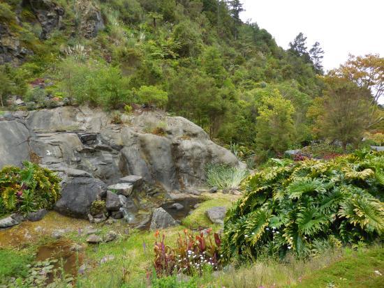 Whangarei, Nueva Zelanda: Lake & waterfall