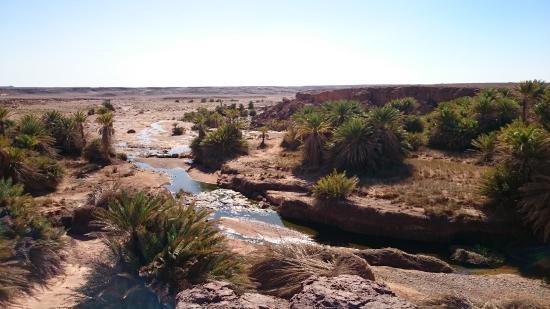 Auberge Merzane: oasis  dans la region