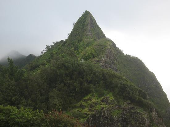 Nuuanu Valley Rain Forest: Вид со смотровой площадки