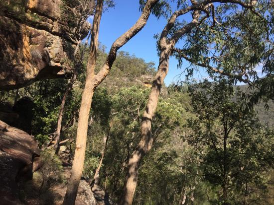 Mangrove Creek, Australien: To the caves