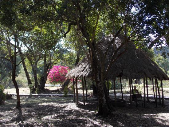 Mara Chui Camp : территория