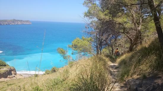 Coll Baix: fotografía de Playa Coll Baix, Alcudia - TripAdvisor